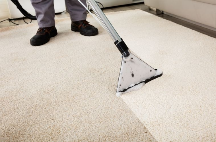 Signs That Your Carpet Needs Professional Cleaning