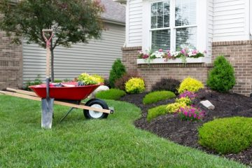 Common Landscaping Mistakes To Watch Out For
