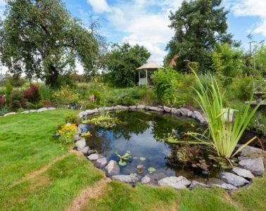 What To Consider Before Adding a Water Feature to Your Yard