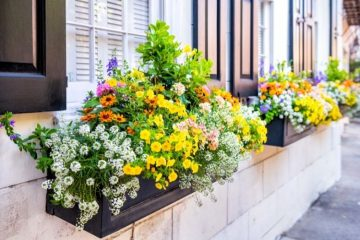 Tips and Tricks To Boost Your Home's Curb Appeal